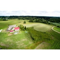 Mierkinie 10 - las i pola - Kliknięcie spowoduje wyświetlenie powiększenia zdjęcia