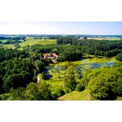 Suwalski Park Krajobrazowy - Turtul - Kliknięcie spowoduje wyświetlenie powiększenia zdjęcia